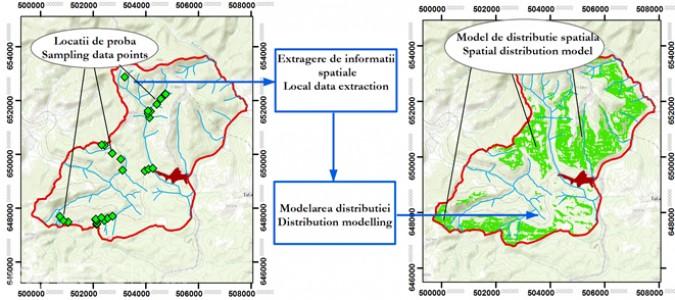 Identificarea habitatelor critice