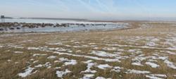 Raport privind Impactul asupra Mediului - Unitate de producţie Arctic, Ulmi