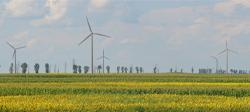 Raport de mediu şi evaluare adecvată parc eolian jud. Brăila