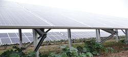 Fişă de prezentare şi declaraţie - parc fotovoltaic, jud. Brăila